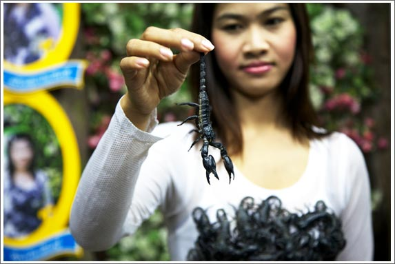 girl holding a scorpion